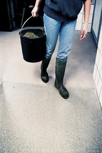 Woman on dog kennel flooring with a bucket of dog food